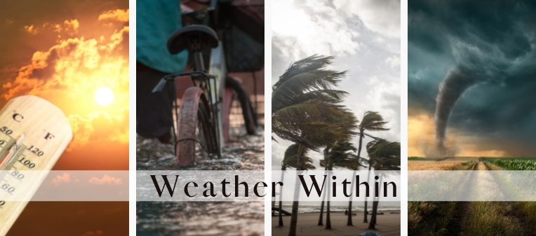 What's the Weather Like Within?