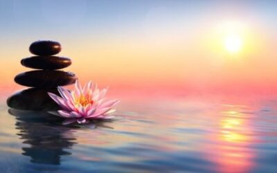 How to Get Grounded with a Nature Meditation